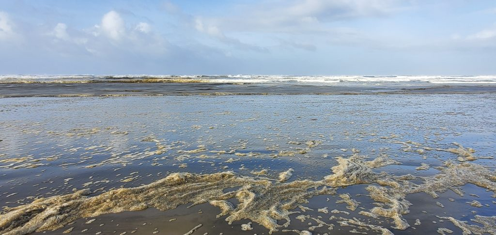 Blue sky with clouds, line of breakers, and wet sand with foam and reflected sky